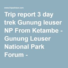 Trip report 3 day trek Gunung leuser NP From Ketambe - Gunung Leuser National Park Forum - TripAdvisor