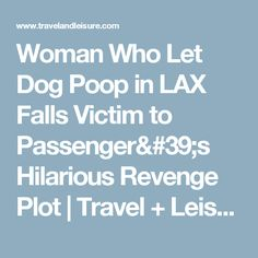 Woman Who Let Dog Poop in LAX Falls Victim to Passenger's Hilarious Revenge Plot | Travel + Leisure