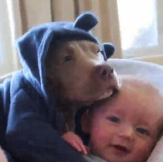 A video showing a baby and puppy named Bronxy cuddling in a swing proves you're never to young to call a dog man's best friend