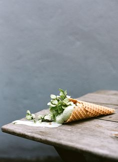 "Kinfolk — Ice Cream and Flowers by Parker Fitzgerald and Amy Merrick ""Kinfolk Vol. 7 is all about Spring, and ice cream (also crabs). So I was once again able to partner up with Amy Merrick to combine. Ice Cream Flower, Cream Flowers, Food Photography Styling, Food Styling, Pastel Photography, Product Photography, Magazine Kinfolk, Parker Fitzgerald, Still Life"