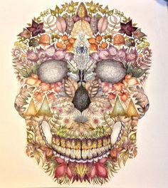 Johanna Basford Enchanted Forest skulls