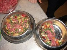 About 6 months ago my sister in a last resort effort to reverse her 2 dogs ongoing health problems started making her own dog food. Her olde...