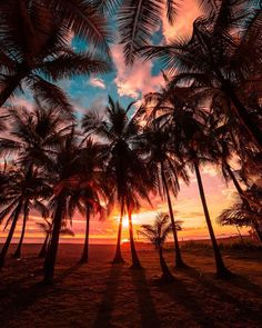 Beautiful destinations to stare at for hours by Michaela Vaux, Platinum manager for Tropic Skin Care Ltd Best Sunset, Beautiful Sunset, Voyager Malin, Costa Rica Pictures, Travel Around The World, Around The Worlds, Cost Rica, Ocean Photography, Photography Tips