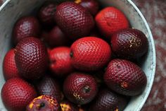 Aguajes. . .  YUM!!!  Amazon wild fruits by CIFOR, via Flickr