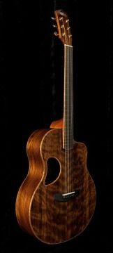 McPherson MG-4.5 XP.  Brazilian rosewood sides and flamed black redwood top.
