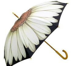 A must need when it starts to rain - stylish umbrella