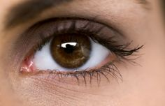 The small, triangular pink bump on the inside corner of each eye is called the caruncula. It contains sweat and oil glands that produce rheu...