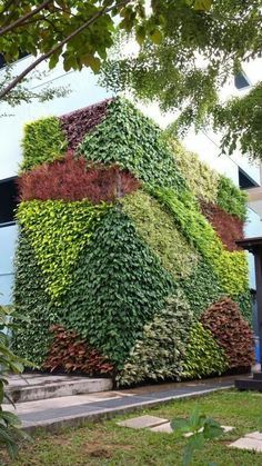 Vertical Planter, Vertical Gardens, Gardens Of The World, Wall Exterior, Green Architecture, Outdoor Areas, Sustainable Living, Garden Landscaping, Greenery