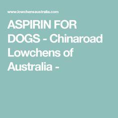 ASPIRIN FOR DOGS - Chinaroad Lowchens of Australia -