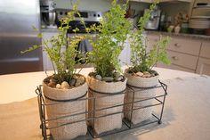Burlap covered jars + creek pebbles + little ferns = Cute Centerpiece!