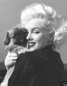 Marilyn Monroe with a peke