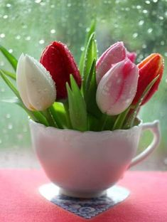 How To Incorporate Tulips Into Your Spring Décor: 49 Ideas   DigsDigs