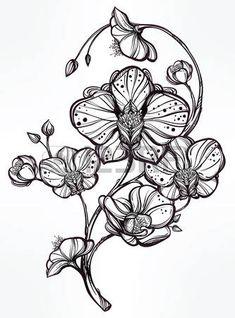 Vintage floral tr�s d�taill� dessin� � la main fleur d'orchid�e souches avec des bourgeons et p�tales. Beau motif, tatouage �l�ment de design. R�servez l'art conceptuel. Isolated illustration de vecteur dans le style de l'art en ligne. photo