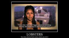 Lobsters!!!!