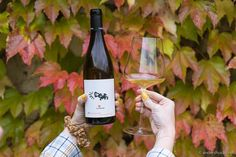 Tasting Menu, Tasting Room, Visit Austria, Types Of Wine, Schnapps, Wine List, Pinot Noir, Wine Making, Hotel Spa