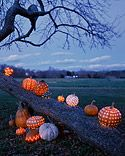 great idea for pumpkin carving