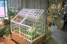 Et lille pip fra mig Mini Greenhouse, Sunrooms, Cool Stuff, Conservatory, Solarium Room, Sunroom, Cold Frame