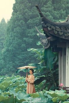 My Hanfu Favorites Pictures of hanfu (han chinese clothing) I like. About Tags Replies Where to Buy Hanfu Chinese Garden, Chinese Art, Chinese Culture, Japanese Culture, Art Chinois, Asian Architecture, Environment Concept, Nagoya, Ancient China