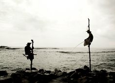 Sri Lanka by Felicitas Matern - www.feelimage.at