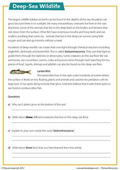 Themes: Deep-sea wildlife. Discover some interesting facts about the creatures that live on the deep-sea floor. What does bioluminescence mean? Why can't plants grow at the bottom the sea? Students read the article and answer the accompanying study questions. Primary resources from www.primaryleap.co.uk