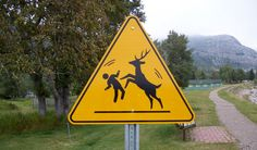 Dance with Animals zone????Limbo under the antlered animal????