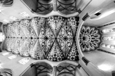 Perspectular by applepear photograph