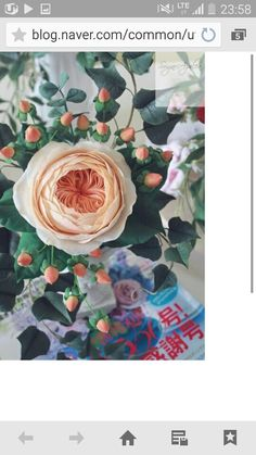 #David Austin rose #Juliet rose #sugarflower #sugar flower class #sugarcraft #sugar rose #gumpaste #korea