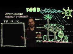 Permaculture Design for Food