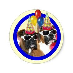 Happy Birthday Boxers stickers