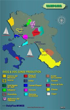 Campania wine region -italy with details of doc and docg appellations. Download it at www.italyfinewines.com