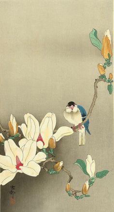 Artist: Ohara Koson Title: Blue Bird on Flowering Branch Date: Medium: Japanese Woodblock Print Size: x inches Publisher: Watanabe Ohara Koson, Japanese Painting, Japanese Artwork, Chinese Painting, Collaborative Art, Illustrations, Japanese Prints, Nature Paintings, Print Artist