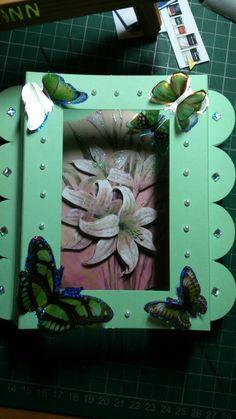 Flowers snd butterflies