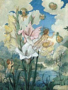 HAROLD GAZE (1885-1962)   THE GLADIOLAS.  Vintage Fairy Art Print Illustration
