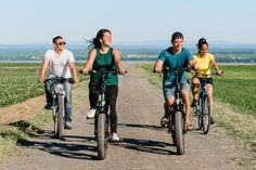 Guided bike tour on Ile d'Orleans 2019 - Quebec City Beaux Villages, Tours, Quebec City, Along The Way, Tour Guide, Island, Hybrid Bikes, Photos, Products