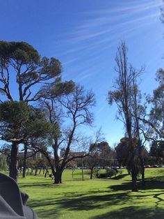 It was a beautiful day in Adelaide.