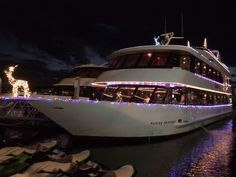 The holidays are a great time to celebrate on our beautiful boat, all decked out for the season! Time To Celebrate, Naples, Getting Out, Opera House, Things To Do, Deck, Boat, Clouds, Seasons