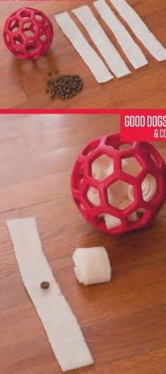 Smart Dog Toys, Diy Dog Toys, Toy Diy, Homemade Dog Toys, Diy Puzzle Toys For Dogs, Brain Games For Dogs, Dog Games, Games For Puppies, Outdoor Dog Toys