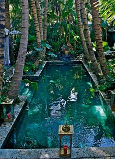 Everyone enjoys deluxe pool designs, aren't they? Right here are some top checklist of high-end swimming pool image for your inspiration. These wonderful swimming pool design suggestions will change your backyard right into an outdoor oasis. Beautiful Pools, Beautiful Places, Beautiful Beach, Amazing Places, Outdoor Pool, Outdoor Gardens, Dream Pools, Swimming Pool Designs, Tropical Garden