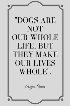Famous Quotes about Dogs love, funny, humour, Best Friend. Losing a Dog, rescue, inspirationa