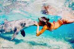 Kissing dolphins with flowers in your hair