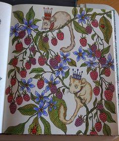 Coloured By Karen Oderkirk. Book: Dagdrommar Medium: Polychromos, Prismacolors, bic mark it and gel pens.