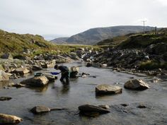 New archaeological research is revealing that south-west Britain was the scene of a prehistoric gold rush.