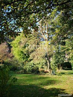 Parkähnliche Gartenanlage in sattem Grün am Gut Barkhausen zwischen Oerlinghausen und Asemissen bei Bielefeld im Teutoburger Wald