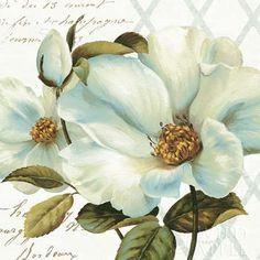 White Floral Bliss II By Lisa Audit, Gallery Wrap Canvas x Tangletown Fine Art Decoupage Vintage, Decoupage Paper, Art Floral, Painting Prints, Fine Art Prints, Framed Art, Wall Art, Canvas Artwork, Graphic Art