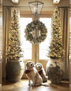 Christmas at interior designer Cindy Rinfret's Connecticut home