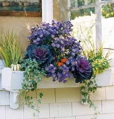 Design Basics < Little Garden, Big Style - MyHomeIdeas.com