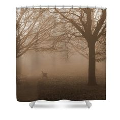 Photo Art Shower Curtain featuring the photograph One Foggy Morning by Judi Saunders.