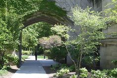 University of Chicago, film location for When Harry Met Sally