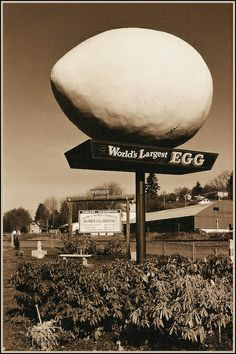 The World's Largest Egg, Winlock, Washington Roadside Attractions, Old Signs, Water Tower, World's Biggest, Washington State, Pacific Northwest, Worlds Largest, Places To See, Around The Worlds