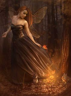 Faeries are generally wary of humans, and tend to keep out of our way. Many are angry with us for our poor treatment of Mother Earth, and if you want to work with this enchanted realm, you must therefore first earn their trust and respect.